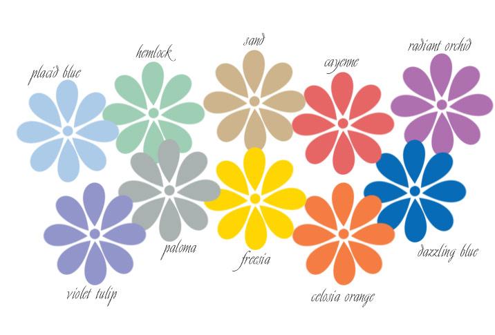 Spring 2014 forecast colours